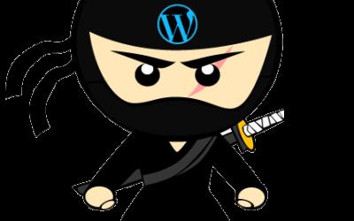 Próxima Meetup: Trucos ocultos para convertirte en un Ninja de WordPress
